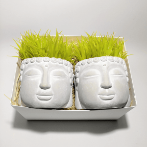caja-regalo-amigo-invisible-buda-grass