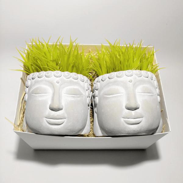 caja-regalo-amigo-invisible-buda-grass