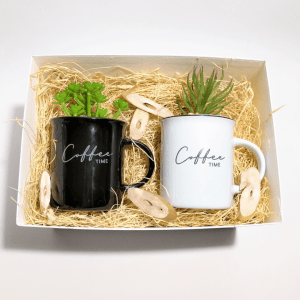 caja-regalo-amigo-invisible-coffee-cactus