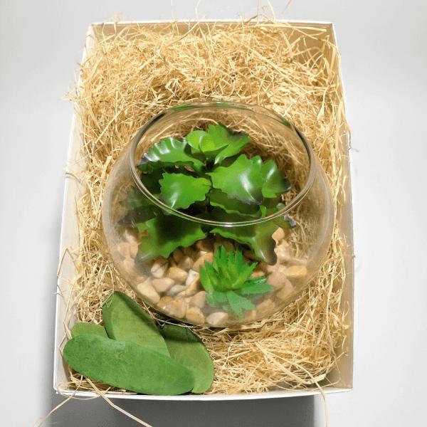caja-regalo-amigo-invisible-natura