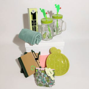 detalle-pack-de-regalo-cactus-fresh