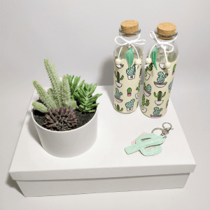 detalles-pack-de-regalo-pretty-cactus-decoracion