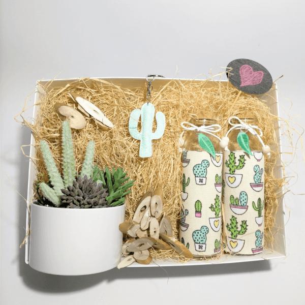 pack-regalo-pretty-cactus-decorativos-para-casa